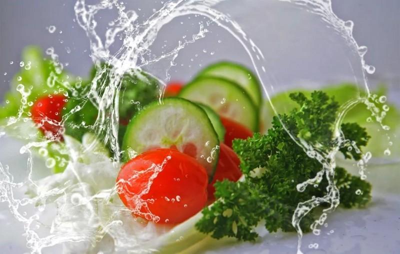 膳食纤维(多糖类物质)的检测与测定